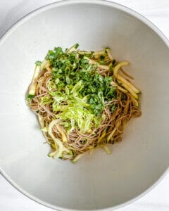one bowl of soba noodles with cucumbers mixed with green veggies and herbs