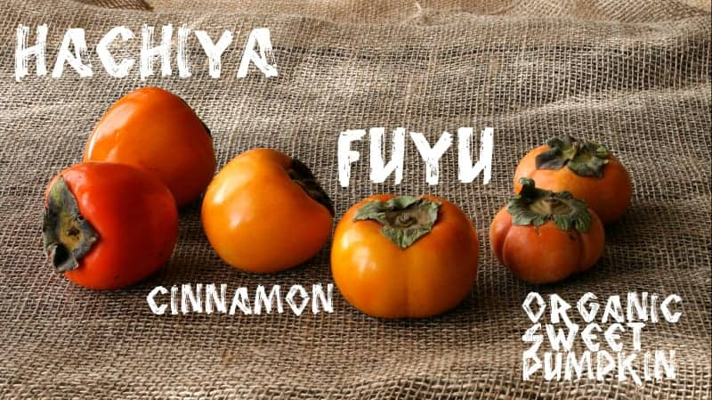 different varieties of persimmons on a gray background