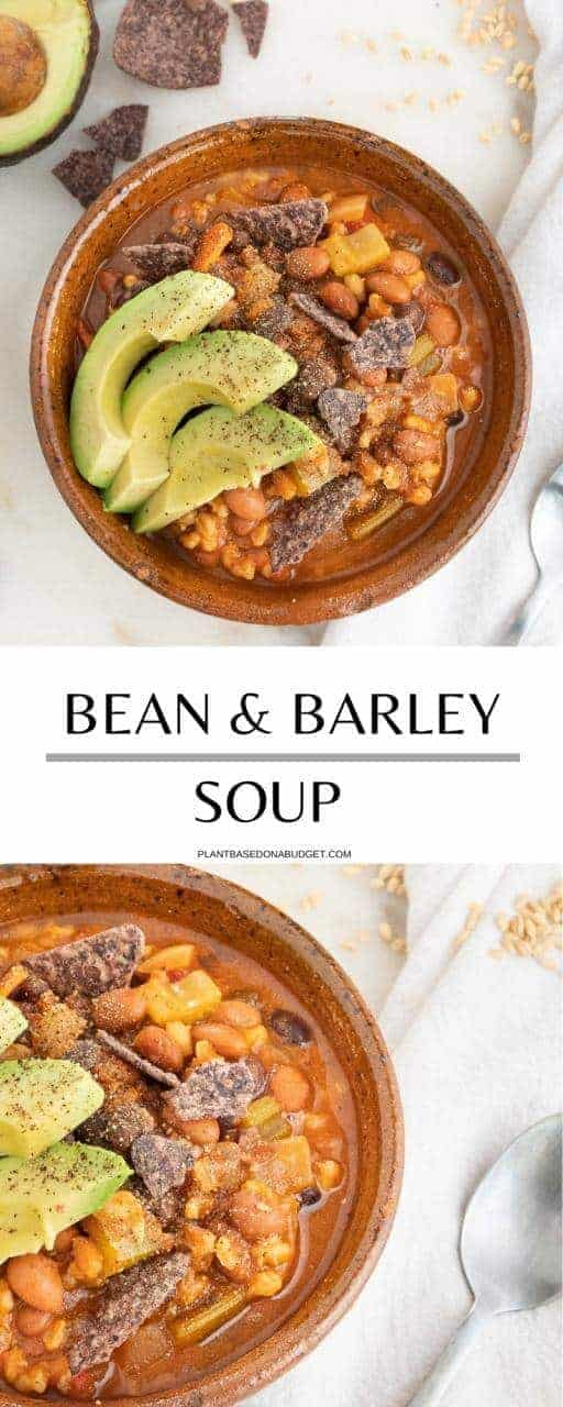 Barley and Bean Soup   Plant-Based on a Budget   #barley #bean #soup #vegan #budget #plantbasedonabudget
