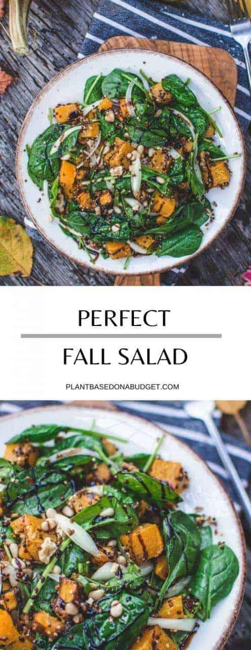 The Perfect Fall Salad   Plant-Based On a Budget   #fall #salad #vegan #healthy #thanksgiving #recipe #plantbasedonabudget