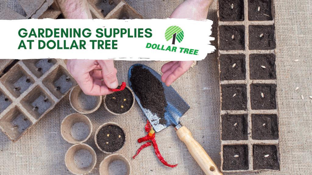 Gardening Supplies at Dollar Tree 3