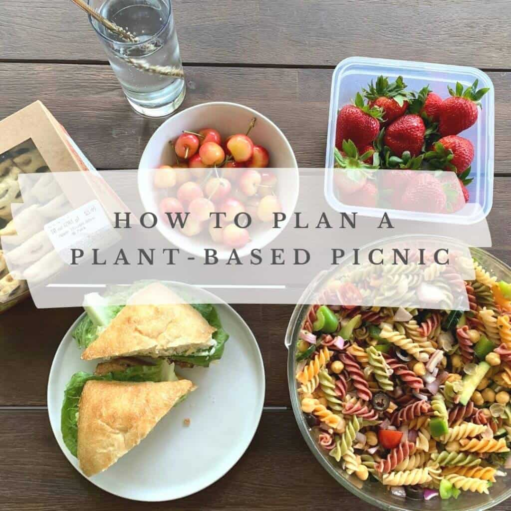 Plant Based Picnic 2