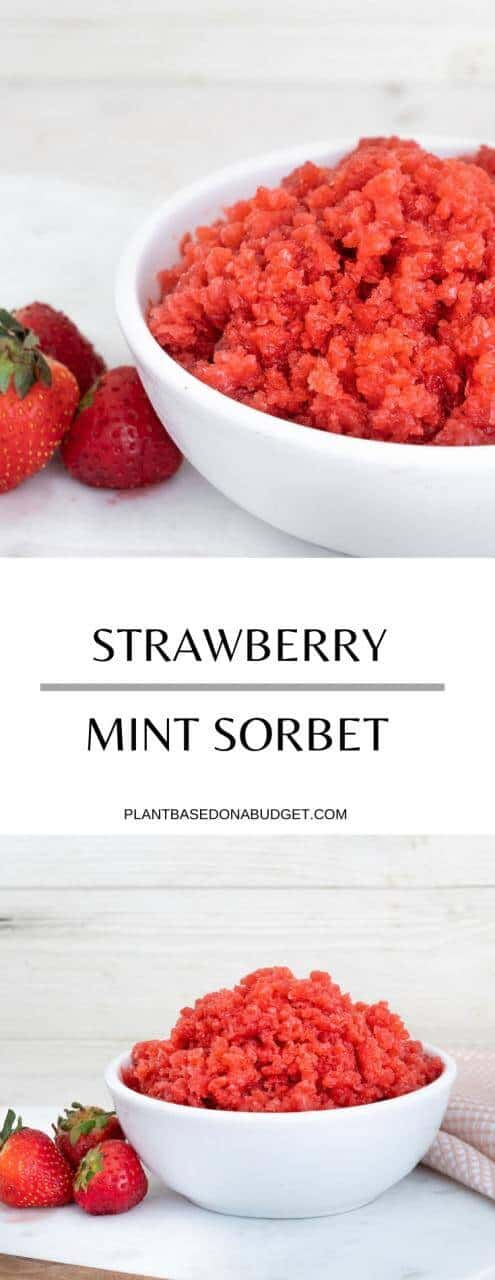 Fresh Strawberry Mint Sorbet   Plant-Based on a Budget   #strawberry #mint #sorbet #dessert #vegan #plantbasedonabudget
