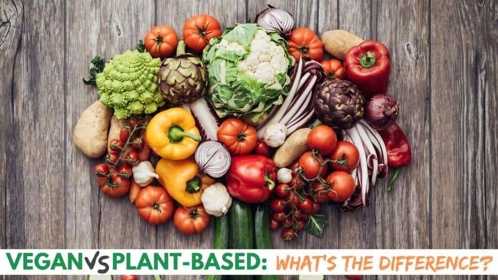Vegan vs Plant Based Graphic