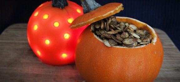 pumpkinseeds final 1