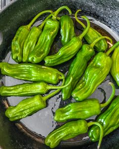 shishito peppers in pan