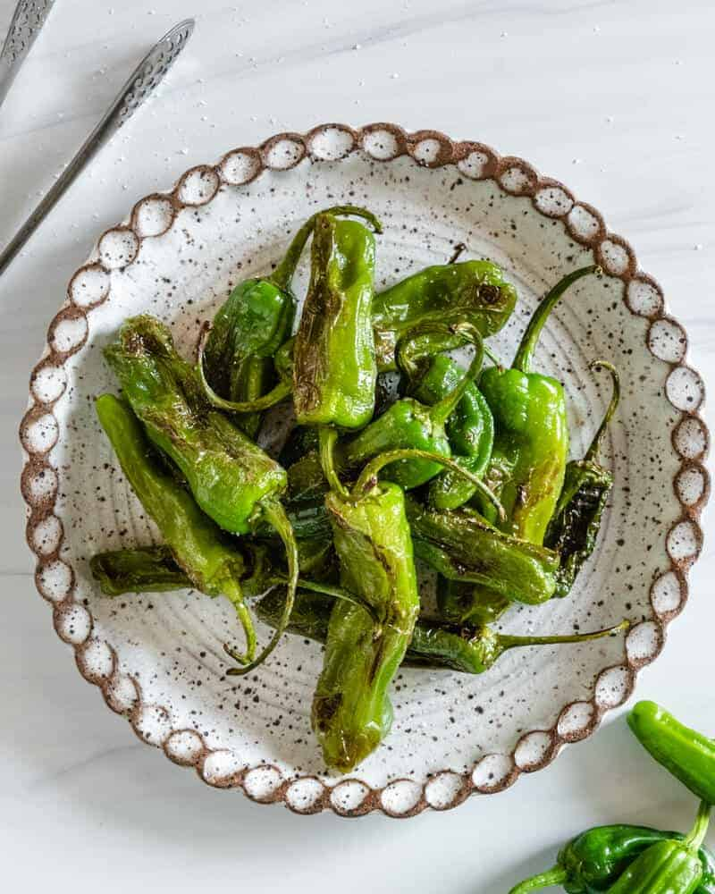 Blistered Shishito Peppers Plant Based on a Budget 5