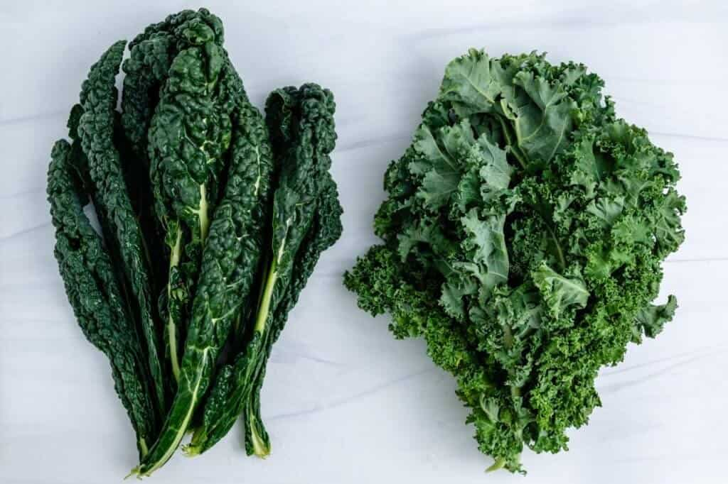 Curly Kale Dino Kale Plant Based on a Budget 1