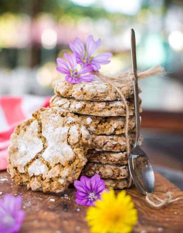 World of Vegan Oatmeal Cookies