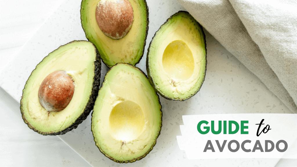 Guide to Avocado