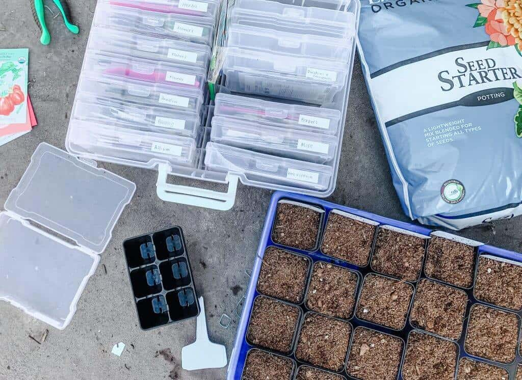 Seed packets in a plastic case next to a tray of small plastic starter pots.