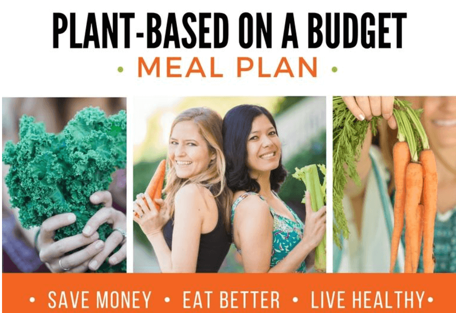 Week 4 of my free vegan meal plan for one person eating on a budget. You can eat healthy vegan meals for less money!