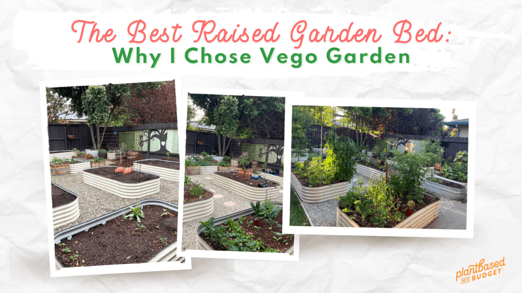 graphic for The Best Raised Garden Bed