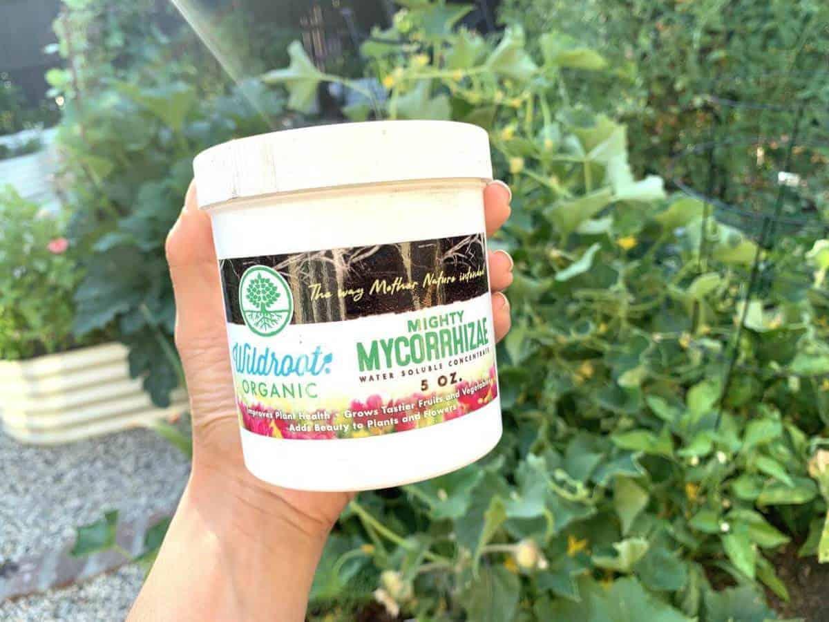 one white tub of vegan fertilizer in a green leafy background