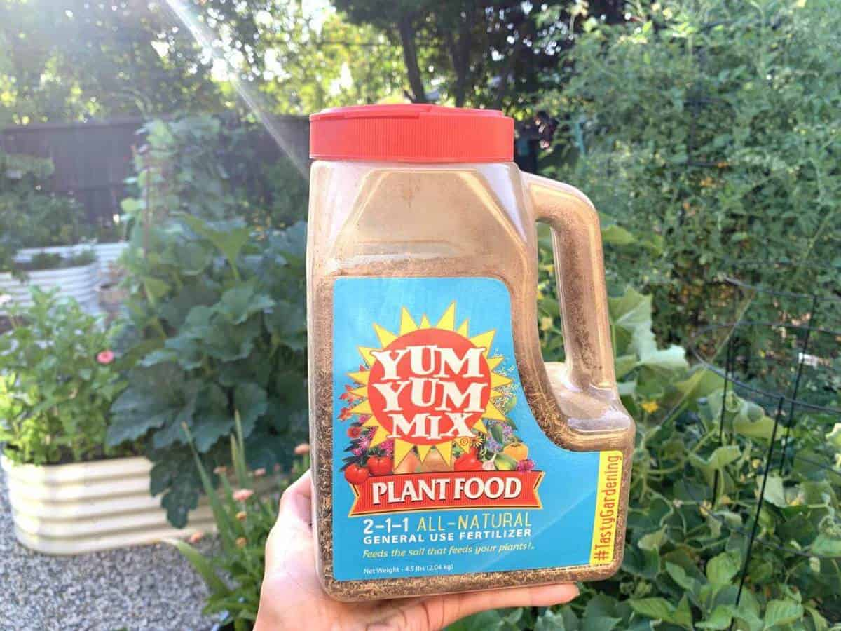 one clear tub of vegan fertilizer in a green leafy background